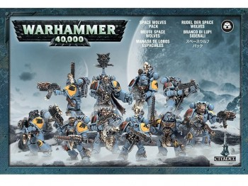Warhammer 40,000: Space Wolves Pack
